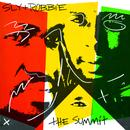 Sly & Robbie: The Summit thumbnail