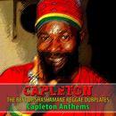 The Best Of Shashamane Reggae Dubplates (Capleton Anthems) thumbnail