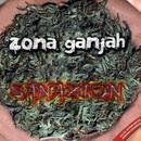 Sanazion thumbnail