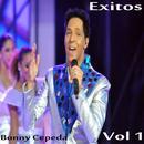 Éxitos De Bonny Cepeda, Vol. 1 thumbnail