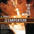 Top Of The World - A Tribute To The Carpenters thumbnail
