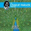 Bird Feathers thumbnail