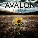 Reborn (Performance Tracks) thumbnail