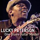 One Guitar Master thumbnail