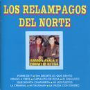 Los Relampagos Del Norte, Ramon Ayala Y Cornelio Reyna thumbnail