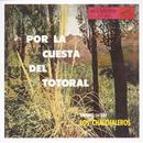 Por La Cuesta Del Totoral thumbnail