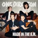 Made In The A.M. thumbnail