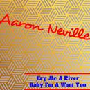 Cry Me A River (Single) thumbnail