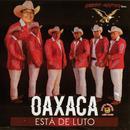 Oaxaca Esta De Luto thumbnail