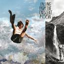 Falling from the Crescent Moon - EP thumbnail