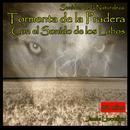 Sonidos de la Naturaleza: Tormenta de la Pradera Con el Sonido de los Lobos thumbnail