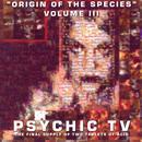 Origin Of The Species - Volume 3 thumbnail
