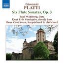 Benedetto Giovanni Platti: Six Flute Sonatas thumbnail
