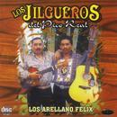Los Arellano Félix thumbnail