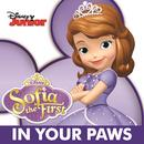 In Your Paws (Single) thumbnail