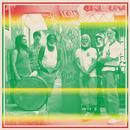 FRKWYS Vol. 9: Sun Araw & M. Geddes Gengras Meet The Congos thumbnail