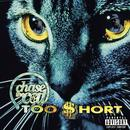 Chase The Cat (Explicit) thumbnail