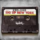 Big Up New York thumbnail