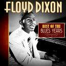 Best Of The Blues Years thumbnail