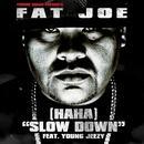 (Ha Ha) Slow Down (Radio Single) thumbnail