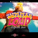 Summer Loud - Single (Explicit) thumbnail
