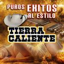 Puros Exitos Al Estilo Tierra Caliente thumbnail