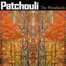 The Woodlands thumbnail