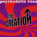 Psychedelic Rose thumbnail