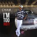 I'm Too Hot! (Single) thumbnail