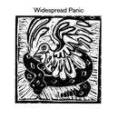 Widespread Panic thumbnail