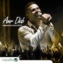 Amr Diab: Greatest Hits 2013 thumbnail