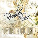 Rumbo Al Sur thumbnail