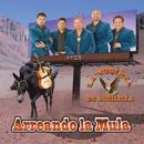 Arreando La Mula thumbnail