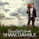 Beautiful Work (Single) thumbnail