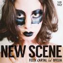 New Scene (Feat. Ofelia) thumbnail