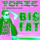 Big Fat (Single) thumbnail