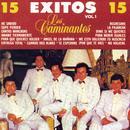 15 Exitos, Vol. 1 thumbnail