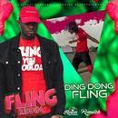 Fling (Yuh Shoulda) (Single) thumbnail