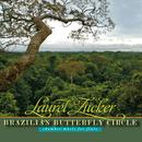 Brazilian Butterfly Circle: Chamber Music For Flute thumbnail