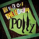 Polly (Single) thumbnail