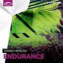 Endurance (Single) thumbnail
