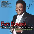 Walkin Back To New Orleans: Best Of Fats Domino thumbnail
