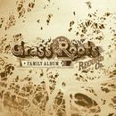 Grass Roots Record Co.: The Family Album thumbnail