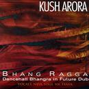 Bhang Ragga: Dancehall Bhangra In Future Dub thumbnail