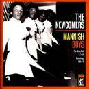 Mannish Boys: The Stax & Volt Recordings 1969-74 thumbnail