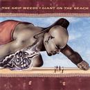 Giant On The Beach thumbnail