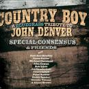 Country Boy: A Bluegrass Tribute To John Denver thumbnail