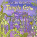Jungle Gym thumbnail