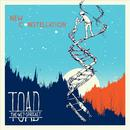 New Constellation thumbnail