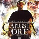 The Best Of Gangsta Dre thumbnail